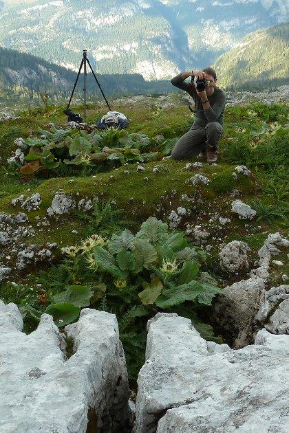 Stefan Hradetzky Naturfotografie