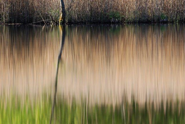 Wasserspiegelung abstrakt
